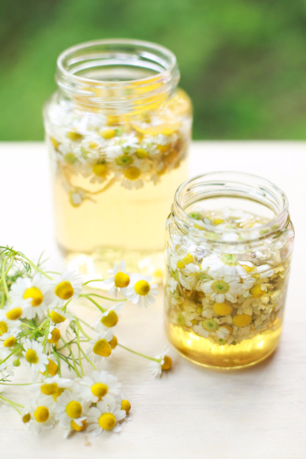 31 Clever Ways To Serve Drinks In Jars - Chamomile And Honey Sweet Tea - Fun and Creative Way to Serve Soda, Tea, Cocktails and Party Drinks. Mason Jar Recipes and More Easy, Fun Ideas