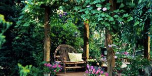 He Creates A Fabulous Sanctuary By Building A Lovely Arbor! (Watch How He Does This!)