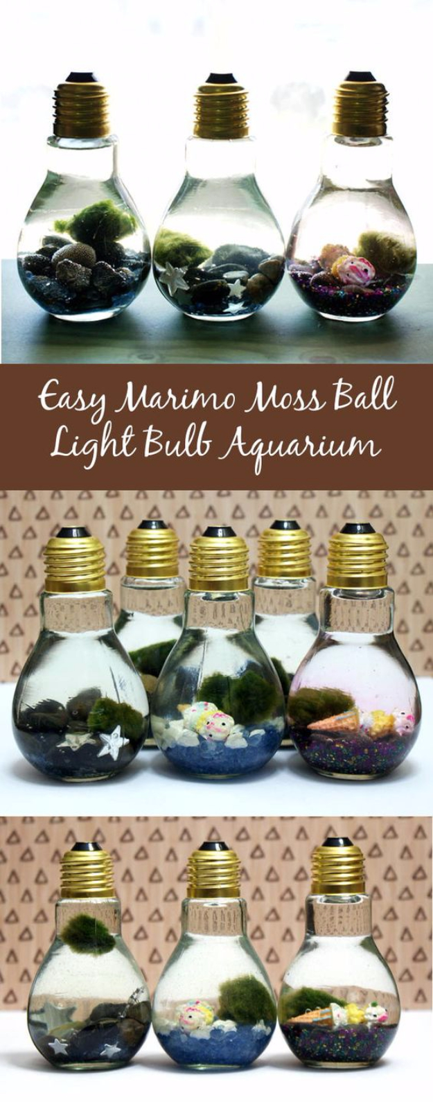 Easy DIY Projects - Easy Marimo Moss Ball DIY Light Bulb Aquarium - Easy DIY Crafts and Projects - Simple Craft Ideas for Beginners, Cool Crafts To Make and Sell, Simple Home Decor, Fast DIY Gifts, Cheap and Quick Project Tutorials #diy #crafts #easycrafts