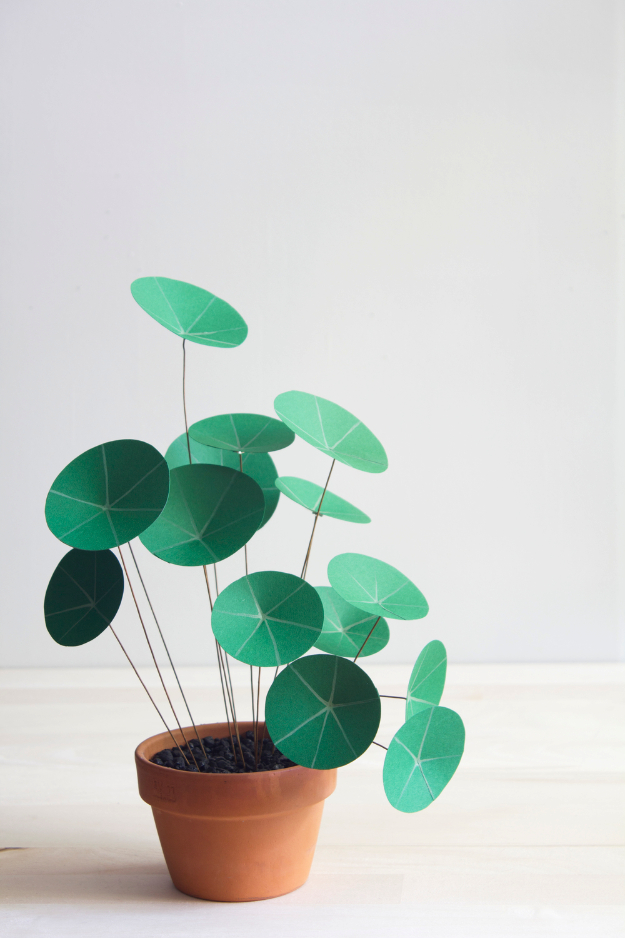 Quick and Easy DIY Project Idea - Paper Chinese Money Plant DIY - Easy Crafts and Projects - Simple Craft Ideas for Beginners, Cool Crafts To Make and Sell, Simple Home Decor, Fast DIY Gifts, Cheap and Quick Project Tutorials
