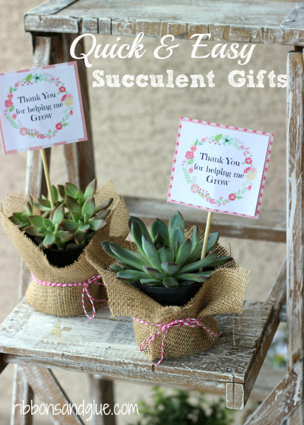 37 Quickest DIY Gifts You Can Make - Quick And Easy Succulent Gifts - Easy and Quick Last Minute DIY Gift Ideas for Mom, Dad, Him or Her, Freinds, Teens, Kids, Girls and Boys. Fast Crafts and Fun Ideas in A Jar, Birthday Presents - Step by Step Tutorials http://diyjoy.com/quick-diy-gifts