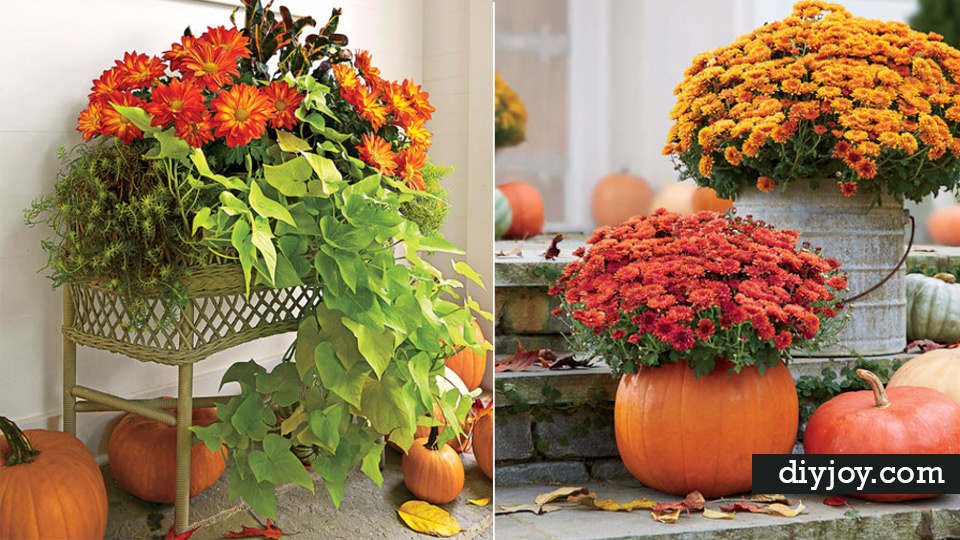 Wonderful Fall Gardening Ideas Part - 1: 33 DIY Gardening Ideas For Fall - DIY Joy
