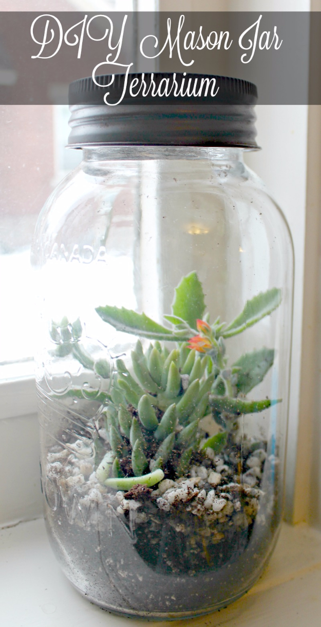 Mason Jar Crafts You Can Make In Under an Hour - DIY Mason Jar Terrarium - Quick Mason Jar DIY Projects that Make Cool Home Decor and Awesome DIY Gifts - Best Creative Ideas for Mason Jars with Step By Step Tutorials and Instructions - For Teens, For Home, For Gifts, For Kids, For Summer, For Fall #masonjarcrafts #easycrafts