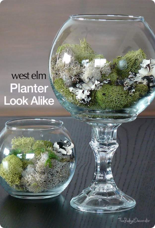 Easy Dollar Store Crafts - Dollar Store Terrariums - Quick And Cheap Crafts To Make, Dollar Store Craft Ideas To Make And Sell, Cute Dollar Store Do It Yourself Projects, Cheap Craft Ideas, Dollar Sore Decor,