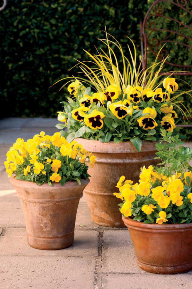 33 Diy Gardening Ideas For Fall
