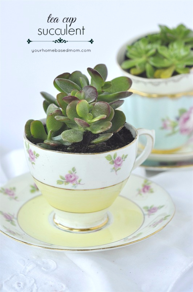 DIY Projects With Old Plates and Dishes - Teacup Succulent - Creative Home Decor for Rustic, Vintage and Farmhouse Looks. Upcycle With These Best Crafts and Project Tutorials #diy #kitchen #crafts