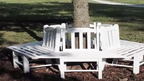 Cool Hes Such A Genius He Builds A Tree Bench Using Old Chairs Frankydiablos Diy Chair Ideas Frankydiabloscom