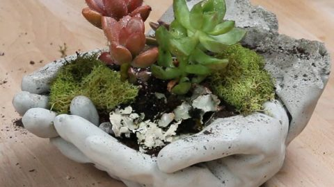 Watch How She Makes One Of The Most Distinctive Planter's Ever! | DIY Joy Projects and Crafts Ideas