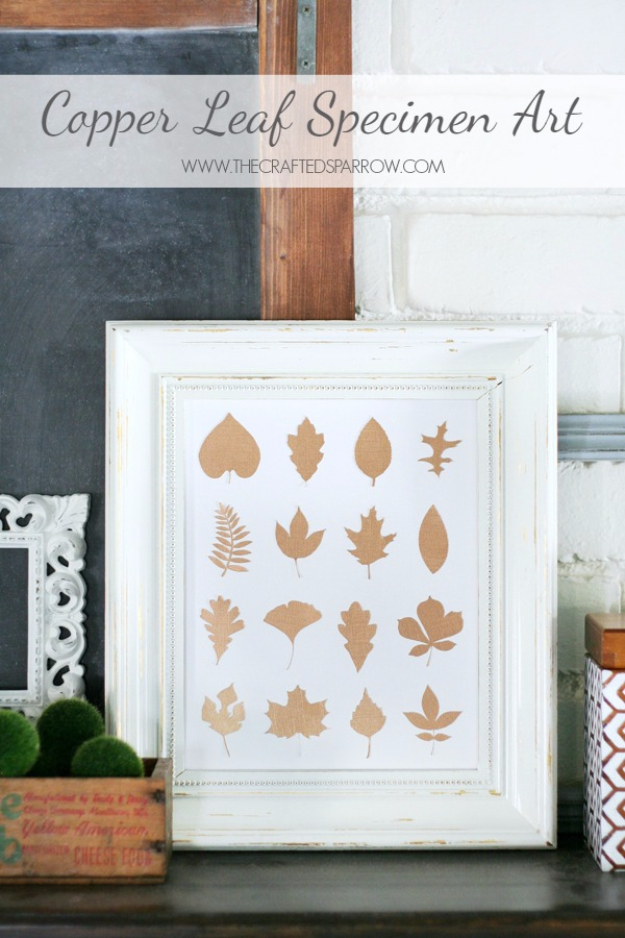 DIY Thanksgiving Decor Ideas - Copper Leaf Specimen Art - Fall Projects and Crafts for Thanksgiving Dinner Centerpieces, Vases, Arrangements With Leaves and Pumpkins - Easy and Cheap Crafts to Make for Home Decor #diy