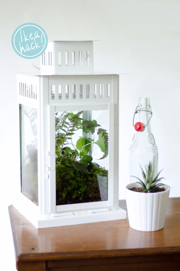 Best IKEA Hacks and DIY Hack Ideas for Furniture Projects and Home Decor from IKEA - DIY Lantern Terrarium - Creative IKEA Hack Tutorials for DIY Platform Bed, Desk, Vanity, Dresser, Coffee Table, Storage and Kitchen, Bedroom and Bathroom Decor #ikeahacks #diy