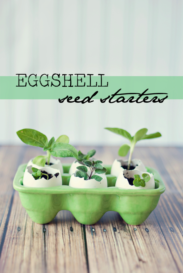 Crafts For Kids To Make At Home - Eggshell Seed Starters - Cheap DIY Projects and Fun Craft Ideas for Children - Cute Paper Crafts, Fall and Winter Fun, Things For Toddlers, Babies, Boys and Girls #kidscrafts #crafts #kids
