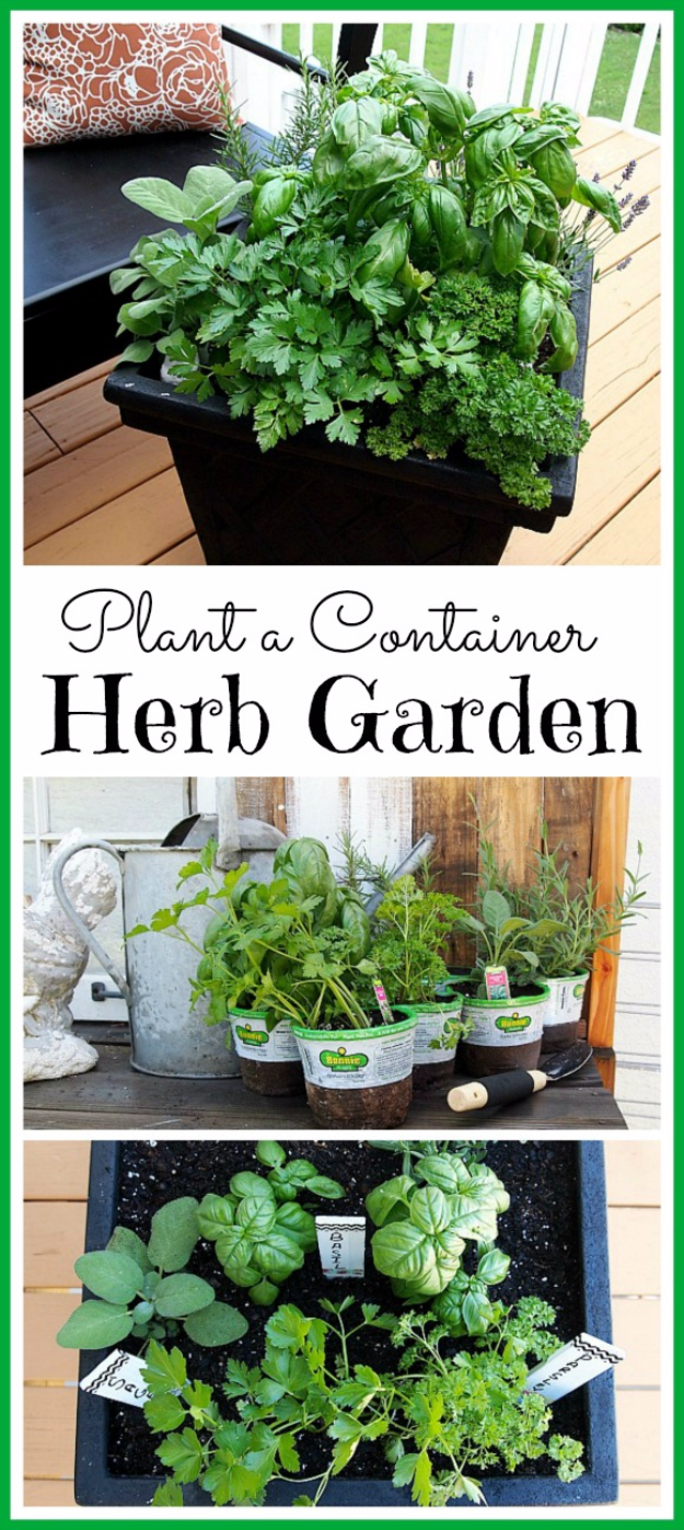 DIY Landscaping Hacks - Plant A Container Herb Garden - Easy Ways to Make Your Yard and Home Look Awesome in Fall, Winter, Spring and Fall. Backyard Projects for Beginning Gardeners and Lawns - Tutorials and Step by Step Instructions