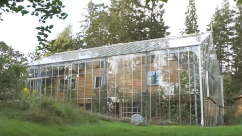 Family In Stockholm Builds An Amazing Greenhouse 'Around' Their Home To Keep Warm (Watch!) | DIY Joy Projects and Crafts Ideas