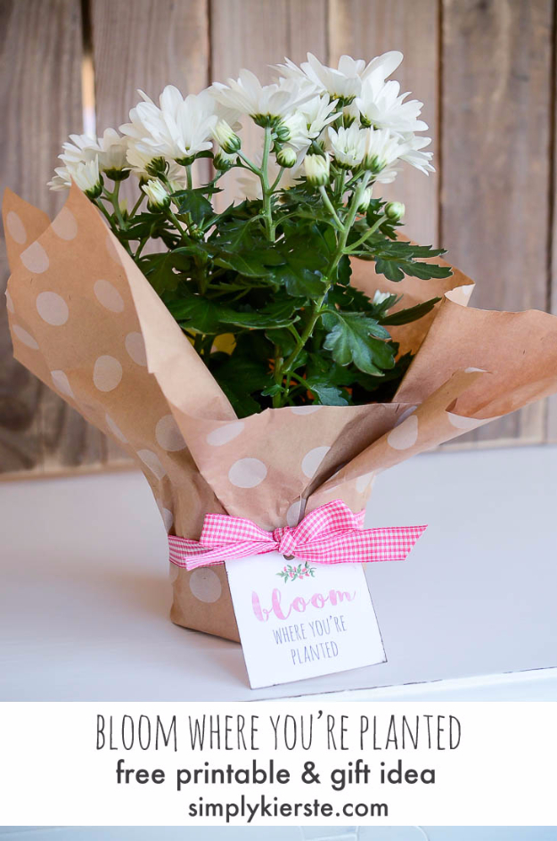 DIY Housewarming Gifts - Bloom Where You're Planted Housewarming Gift- Best Do It Yourself Gift Ideas for Friends With A New House, Home or Apartment - Creative, Cheap and Quick Crafts and DIY Ideas for Housewarming Presents - Mason Jar Gifts, Baskets, Gifts for Women and Men #diygifts #housewarming #diyideas #cheapgifts