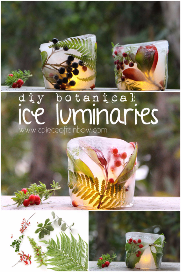 DIY Christmas Luminaries and Home Decor for The Holidays - DIY Botanical Ice Luminaries - Cool Candle Holders, Tea Lights, Holiday Gift Ideas, Christmas Crafts for Kids #diy #luminaries #christmas