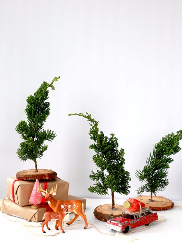 DIY Ideas for Your Christmas Tree - DIY Fresh Mini Trees - Cool Handmade Ornaments, DIY Decorating Ideas and Ornament Tutorials - Cheap Christmas Home Decor - Xmas Crafts #christmas #diy #crafts