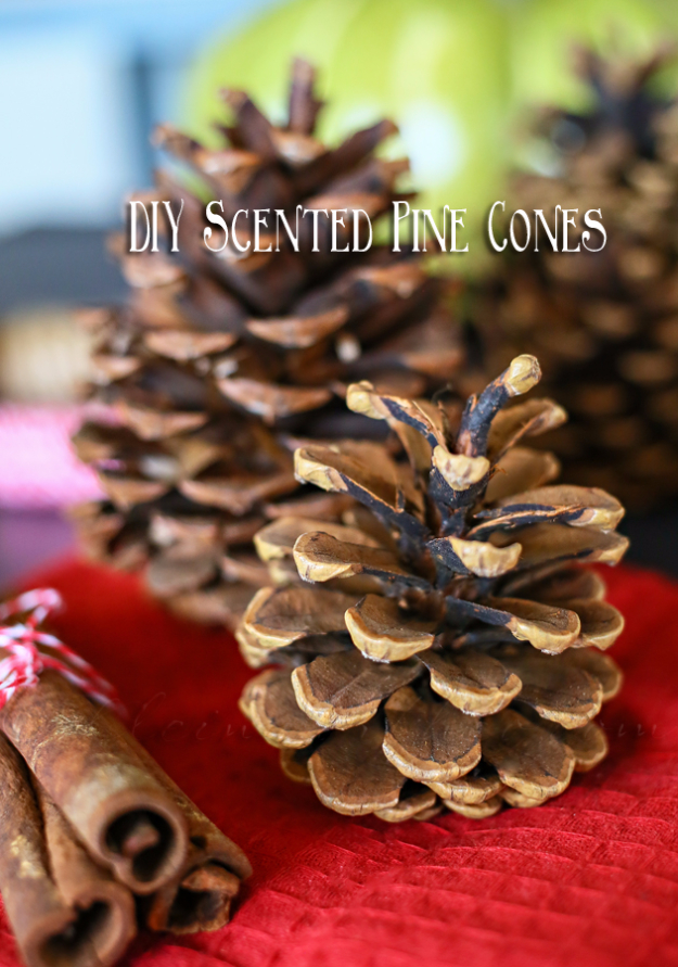 Best DIY Ideas for Wintertime - DIY Scented Pinecones - Winter Crafts with Snowflakes, Icicle Art and Projects, Wreaths, Woodland and Winter Wonderland Decor, Mason Jars and Dollar Store Ideas - Easy DIY Ideas to Decorate Home and Room for Winter - Creative Home Decor and Room Decorations for Adults, Teens and Kids #diy #winter #crafts