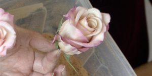 She Shows Us How To Preserve Those Beautiful Flowers You Receive On Special Occasions!