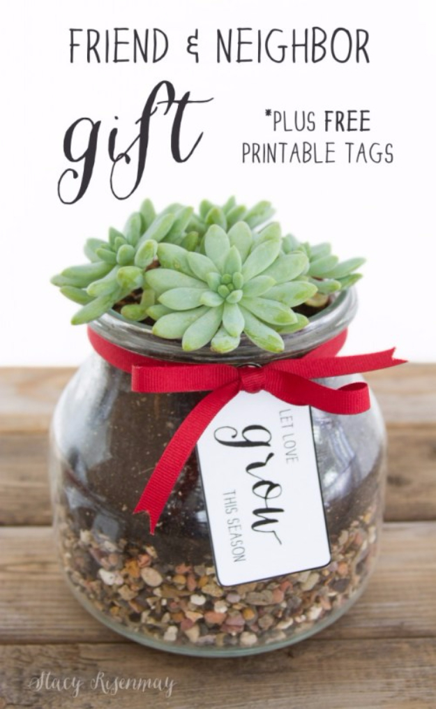 DIY Gifts for Friends - Christmas Gift Idea for Neighbor - - Friend And Neighbor Succulent In A Mason Jar Gift - Cute Mason Jar Crafts, Gift Baskets and Cheap and Easy Gift Ideas to Make for Friends - Do It Yourself Projects You Can Sew and Craft That Make Awesome DIY Gifts and Homemade Christmas Presents #diygifts #christmasgifts #xmasgifts