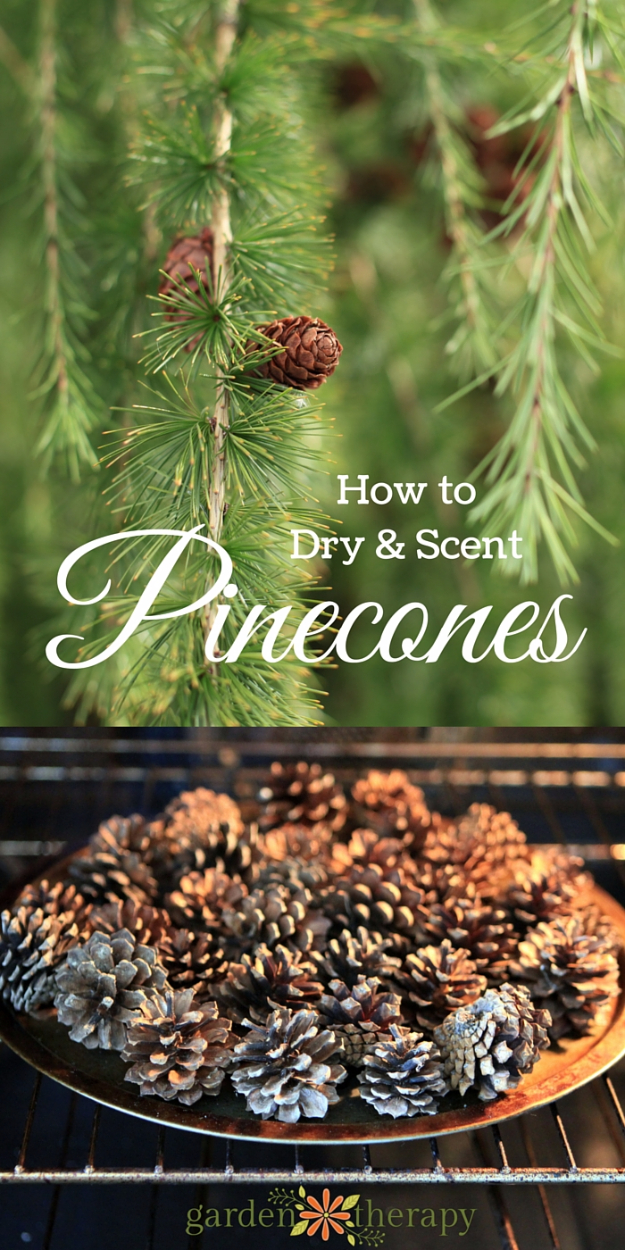 Best DIY Ideas for Wintertime - Homemade Scented Pinecones And A Pretty DIY Diffuser - Winter Crafts with Snowflakes, Icicle Art and Projects, Wreaths, Woodland and Winter Wonderland Decor, Mason Jars and Dollar Store Ideas - Easy DIY Ideas to Decorate Home and Room for Winter - Creative Home Decor and Room Decorations for Adults, Teens and Kids #diy #winter #crafts