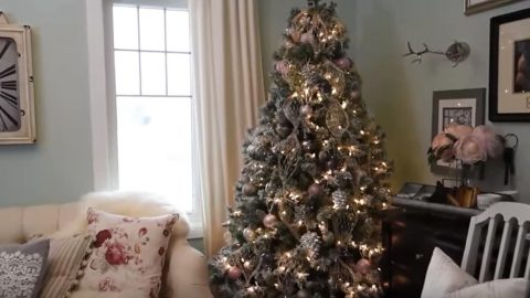 She Shows Us Some Tips On How To Decorate A Stunning Christmas Tree!   DIY Joy Projects and Crafts Ideas