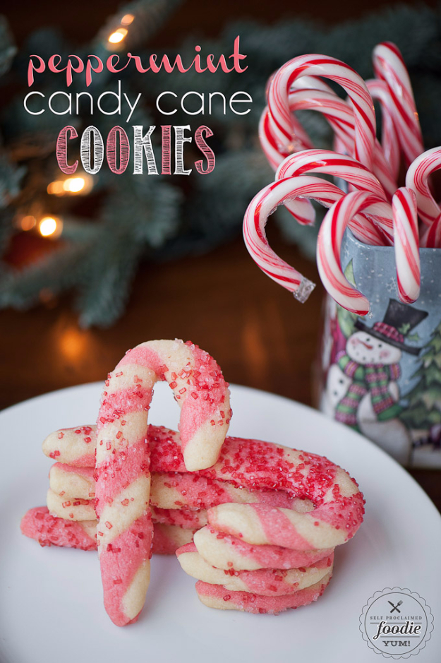 38 best recipes for christmas cookies page 4 of 6 diy joy for Simple christmas cookie and candy recipes