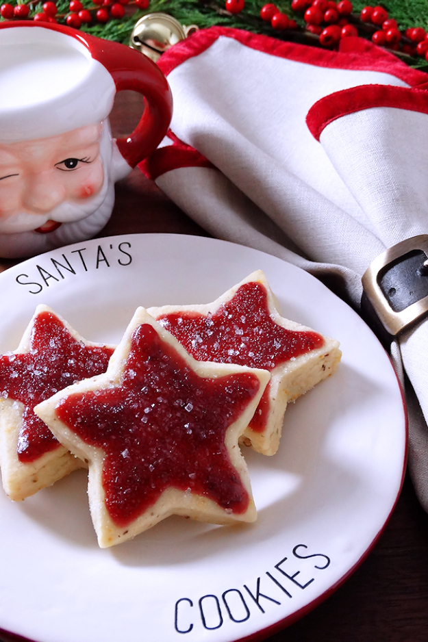 Best Recipes for Christmas Cookies- Sugar Plum Shortbread Christmas Cookies - Easy Decorated Holiday Cookies - Candy Cookie Recipes Ideas for Kids - Traditional Favorites and Gluten Free and Healthy Versions - Quick No Bake Cookies and Last Minute Desserts for the Holidays http://diyjoy.com/best-christmas-cookie-recipes