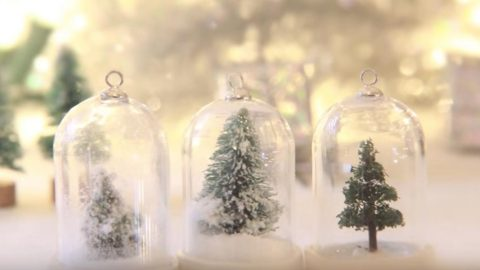 Christmas In Evergreen Snow Globe.Watch How To Make A Beautiful Waterless Snow Globe Into A