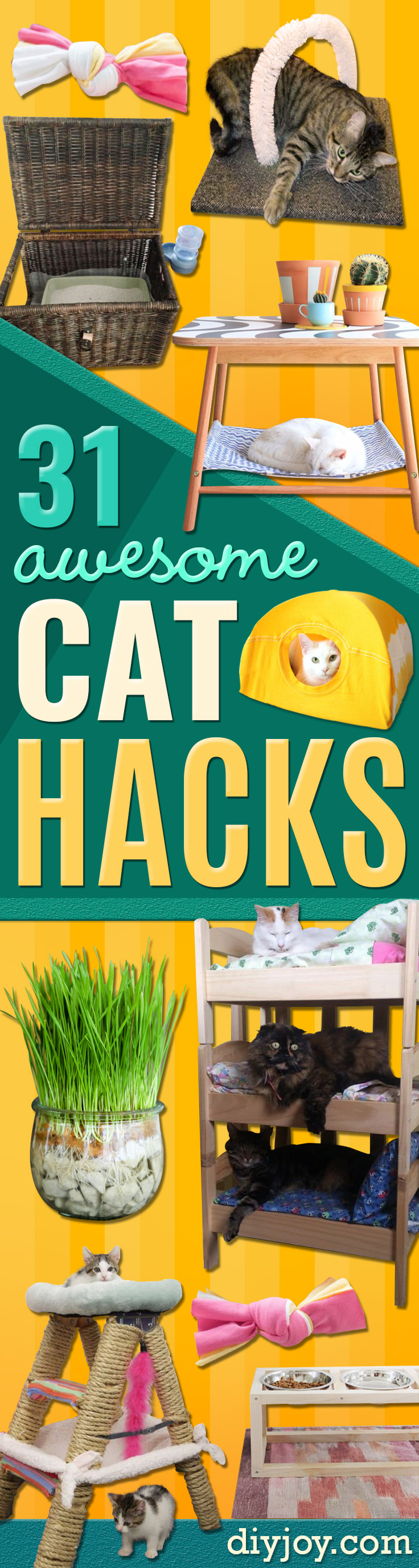 DIY Cat Hacks - Tips and Tricks Ideas for Cat Beds and Toys, Homemade Remedies for Fleas and Scratching - Do It Yourself Cat Treat Recips, Food and Gear for Your Pet - Cool Gifts for Cats