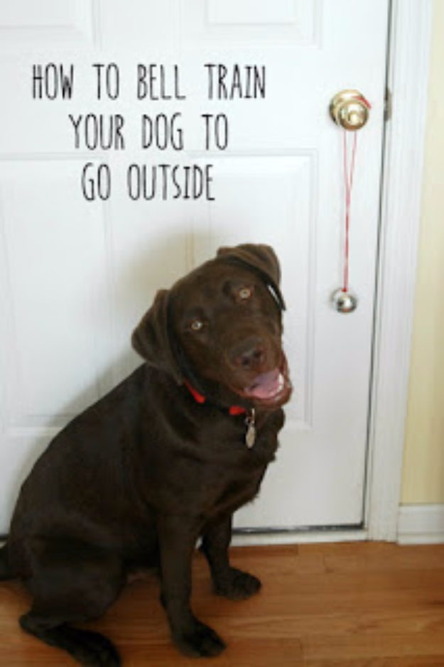 DIY Dog Hacks - Bell Train Your Dog To Go Outside - Training Tips, Ideas for Dog Beds and Toys, Homemade Remedies for Fleas and Scratching - Do It Yourself Dog Treat Recips, Food and Gear for Your Pet #dogs #diy #crafts