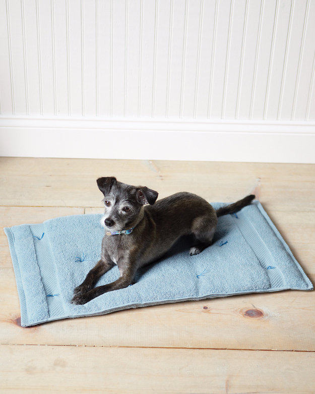 DIY Dog Hacks - Cozy Travel Cushion for Pets - Training Tips, Ideas for Dog Beds and Toys, Homemade Remedies for Fleas and Scratching - Do It Yourself Dog Treat Recips, Food and Gear for Your Pet #dogs #diy #crafts