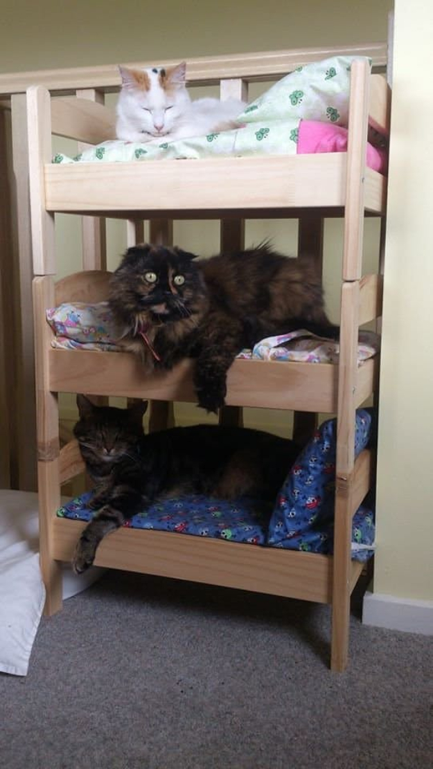 DIY Cat Hacks - DIY Cat Bed From Ikea Doll Bed - Tips and Tricks Ideas for Cat Beds and Toys, Homemade Remedies for Fleas and Scratching - Do It Yourself Cat Treat Recips, Food and Gear for Your Pet - Cool Gifts for Cats http://diyjoy.com/diy-cat-hacks