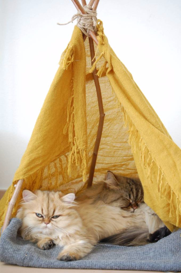 DIY Cat Hacks - DIY Cat Teepee - Tips and Tricks Ideas for Cat Beds and Toys, Homemade Remedies for Fleas and Scratching - Do It Yourself Cat Treat Recips, Food and Gear for Your Pet - Cool Gifts for Cats #cathacks #cats #pets