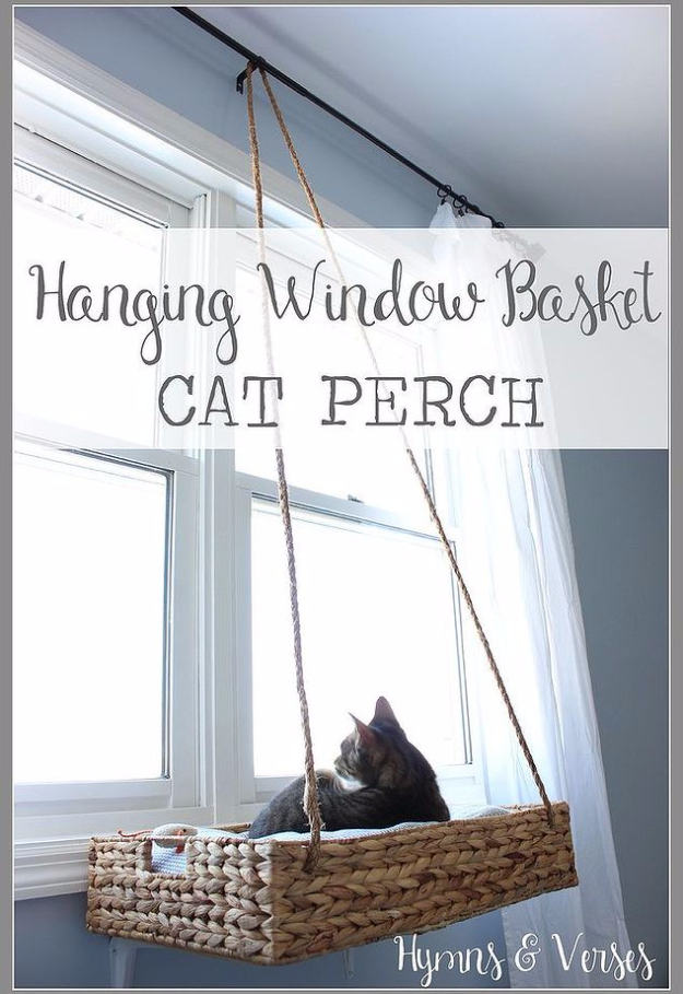 DIY Cat Hacks - DIY Hanging Window Basket Cat Perch - Tips and Tricks Ideas for Cat Beds and Toys, Homemade Remedies for Fleas and Scratching - Do It Yourself Cat Treat Recips, Food and Gear for Your Pet - Cool Gifts for Cats http://diyjoy.com/diy-cat-hacks