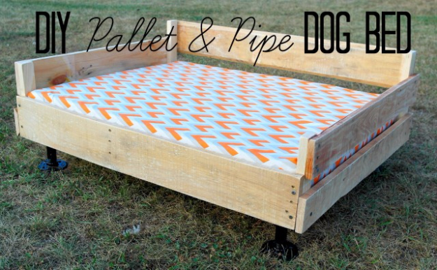 Best DIY Pallet Furniture Ideas - DIY Pallet And Pipe Dog Bed - Cool Pallet Tables, Sofas, End Tables, Coffee Table, Bookcases, Wine Rack, Beds and Shelves - Rustic Wooden Pallet Furniture Made Easy With Step by Step Tutorials - Quick DIY Projects and Crafts by DIY Joy http://diyjoy.com/best-diy-pallet-furniture-ideas