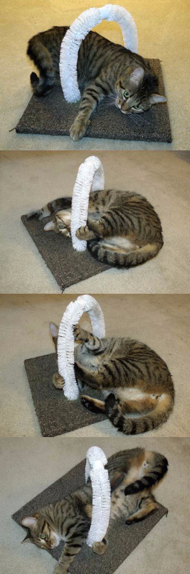 DIY Cat Hacks - DIY Self PEtting Station For Your Cats - Tips and Tricks Ideas for Cat Beds and Toys, Homemade Remedies for Fleas and Scratching - Do It Yourself Cat Treat Recips, Food and Gear for Your Pet - Cool Gifts for Cats #cathacks #cats #pets