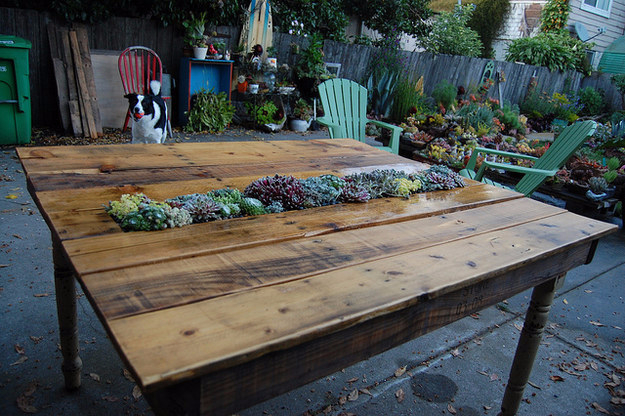 Best DIY Pallet Furniture Ideas - DIY Succulent Pallet Table - Cool Pallet Tables, Sofas, End Tables, Coffee Table, Bookcases, Wine Rack, Beds and Shelves - Rustic Wooden Pallet Furniture Made Easy With Step by Step Tutorials - Quick DIY Projects and Crafts by DIY Joy http://diyjoy.com/best-diy-pallet-furniture-ideas