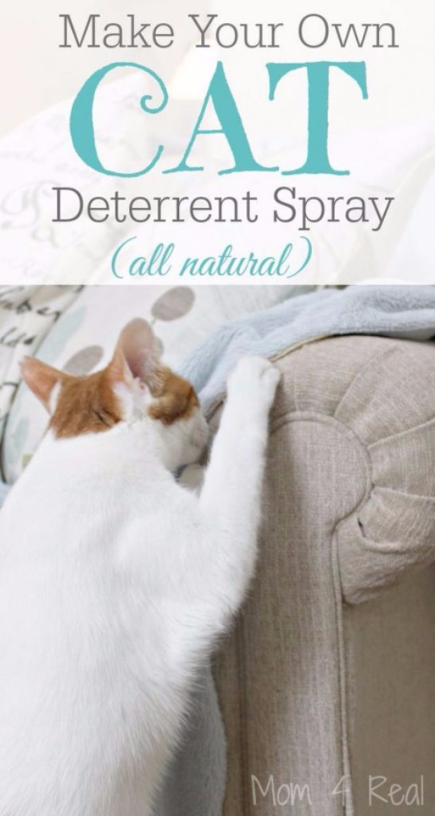 Best DIY Hacks for The New Year - Make Your Own Cat Deterrent Spray - Easy Organizing and Home Improvement Ideas - Tips and Tricks for Quick DIY Ideas to Simplify Life - Step by Step Hack Tutorials for Genius Ways to Make Quick Things Easier http://diyjoy.com/best-diy-hacks