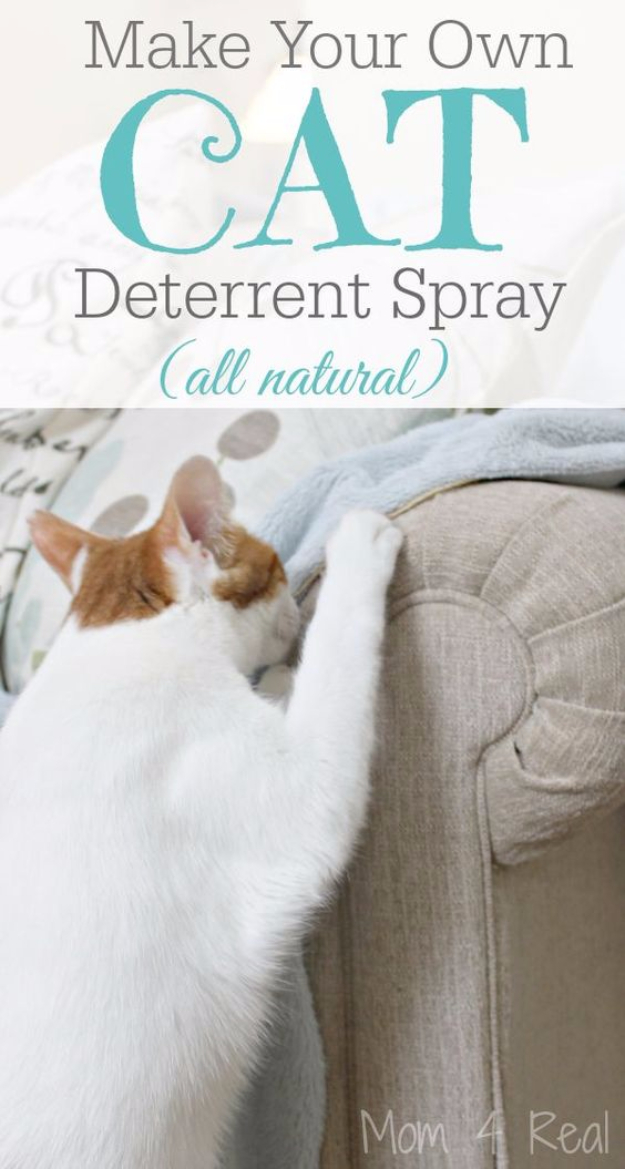 DIY Cat Hacks - Make Your Own Cat Deterrent Spray - Tips and Tricks Ideas for Cat Beds and Toys, Homemade Remedies for Fleas and Scratching - Do It Yourself Cat Treat Recips, Food and Gear for Your Pet - Cool Gifts for Cats http://diyjoy.com/diy-cat-hacks