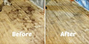 He Shows An Amazing Solution To Removing Dog Urine From Our Precious Hardwood Floors!