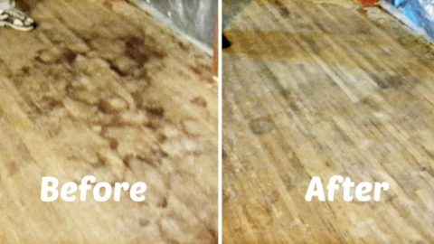 He Shows An Amazing Solution To Removing Dog Urine From Our Precious Hardwood Floors! | DIY Joy Projects and Crafts Ideas
