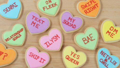 Check Out These Adorable Conversation Valentine's Heart Cookies She Makes! | DIY Joy Projects and Crafts Ideas