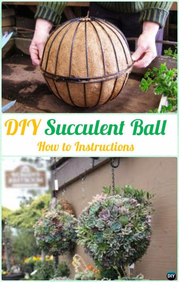 DIY Ideas for the Outdoors - DIY Outdoor Succulent Garden - Best Do It Yourself Ideas for Yard Projects, Camping, Patio and Spending Time in Garden and Outdoors - Step by Step Tutorials and Project Ideas for Backyard Fun, Cooking and Seating #diy