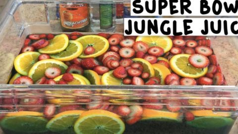 They Make A Special Drink For Their Super Bowl Party That Packs A Punch! | DIY Joy Projects and Crafts Ideas