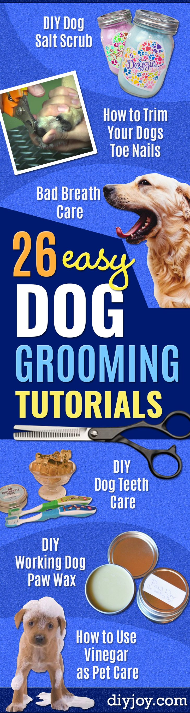 DIY Dog Grooming Tutorials - Cool and Easy Ways to Wash, Groom and Style Your Pets Fur - Trim Toenails, Brush Teeth, Bath, Trim and Clip Dogs Fur - Hair - Remove Fleas and Anti Itch - Save Money At The Groomer By Learning How To Do These Things At Home #diy #pets