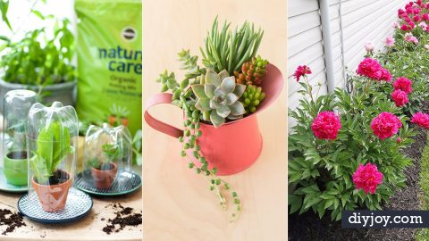 31 DIY Tips for Spring Gardening | DIY Joy Projects and Crafts Ideas