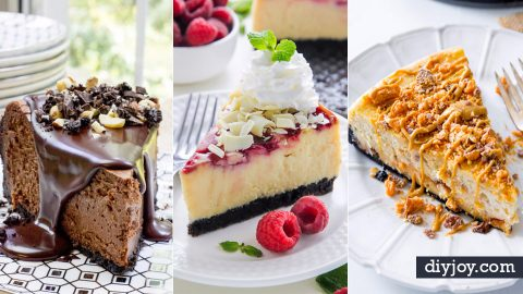38 Creative Cheesecake Recipes | DIY Joy Projects and Crafts Ideas