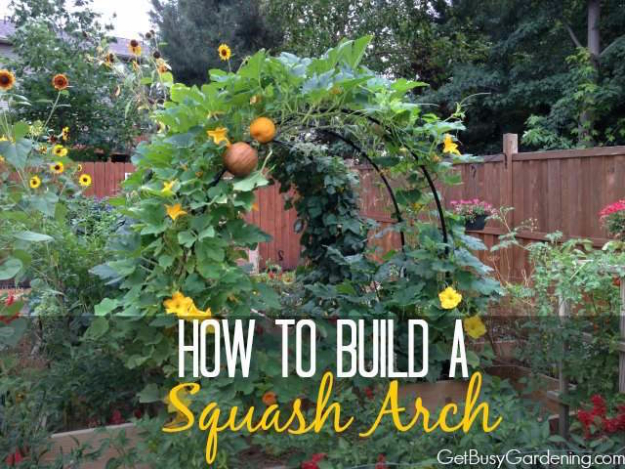 DIY Spring Gardening Projects - Build a Squash Arch - Cool and Easy Planting Tips for Spring Garden - Step by Step Tutorials for Growing Seeds, Plants, Vegetables and Flowers in You Yard - DIY Project Ideas for Women and Men - Creative and Quick Backyard Ideas For Summer