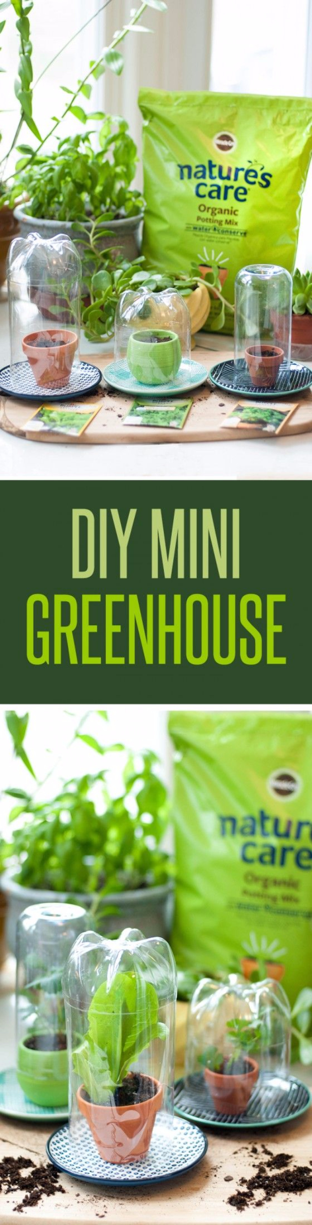 DIY Spring Gardening Projects - DIY Mini Greenhouses - Cool and Easy Planting Tips for Spring Garden - Step by Step Tutorials for Growing Seeds, Plants, Vegetables and Flowers in You Yard - DIY Project Ideas for Women and Men - Creative and Quick Backyard Ideas For Summer