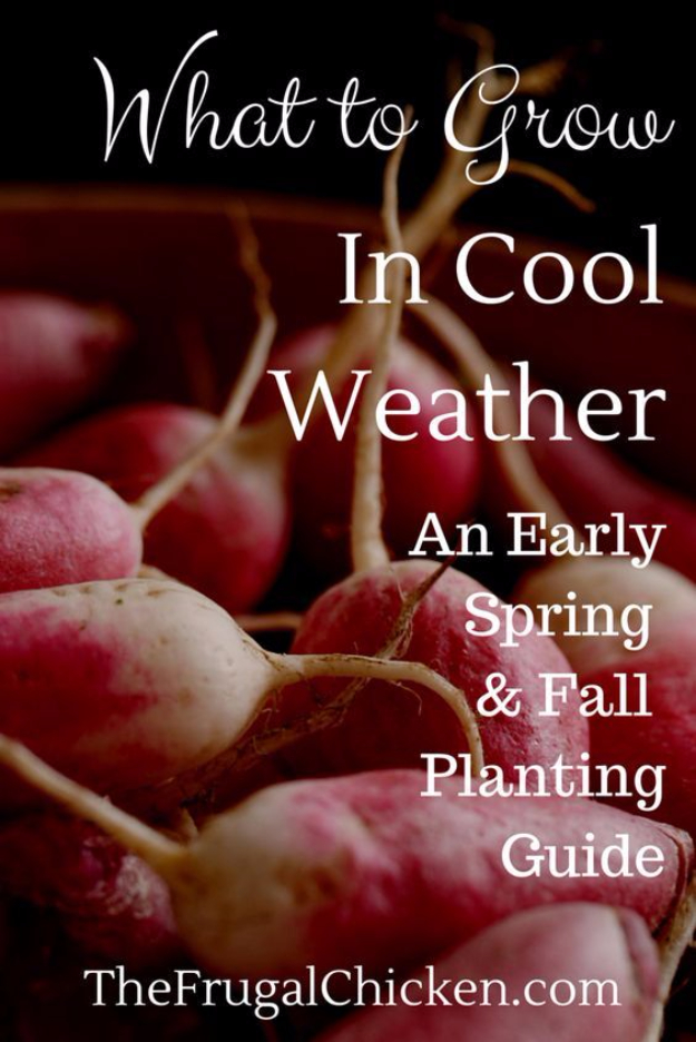 DIY Spring Gardening Projects - Early Spring Planting Guide - Cool and Easy Planting Tips for Spring Garden - Step by Step Tutorials for Growing Seeds, Plants, Vegetables and Flowers in You Yard - DIY Project Ideas for Women and Men - Creative and Quick Backyard Ideas For Summer